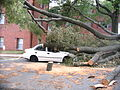 Barcroft 4200 Columbia Pike Car Damaged by Tree (2) (7536693722).jpg