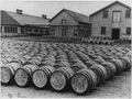 Barrels of seal furs - NARA - 297074.tif