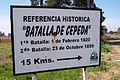 Batalla Cepeda W2013-3.jpg