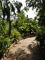 Bayombong,NuevaVizcayaCapitoljf0263 22.JPG