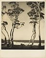 Beach scene from Camping trips on Culburra Beach by Max Dupain and Olive Cotton (12825379393) (2).jpg