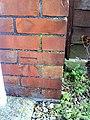 Benchmark on ^170 Gold Croft - geograph.org.uk - 2287212.jpg
