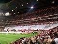 BenficaCampeão2009-10 (2).jpg