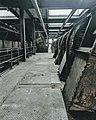 Beringen coal mine 11.jpg