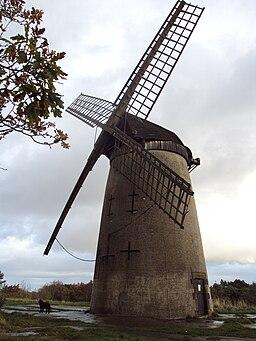 Bidston Hill - DSC04338