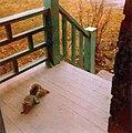 Bienvenu écureuil 1980 - panoramio.jpg