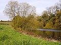 Binsted fish ponds - geograph.org.uk - 623526.jpg