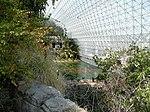 «Биосфера-2» изнутри. Блоки «Саванна» и «Океан».