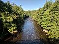 Blackwater Falls State Park WV 20.jpg