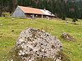 Blaichach - Gunzesrieder Tal - Vordere Au-Alpe, Nagelfluhfels.JPG
