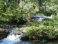 Blue Creek Toledo Belize.jpg