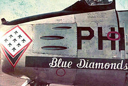 Blue Diamonds Fighter Jet.jpg