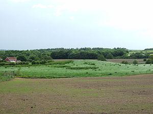 Wrightington - Boar's Den Tumulus at High Moor
