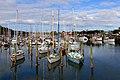 Boat Marina Whangarei. NZ (20440419042).jpg