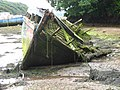 Boat wreck in Castle Pill - geograph.org.uk - 929185.jpg