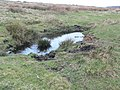 Boggy pool on Eglwyseg moorland - geograph.org.uk - 756664.jpg