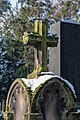 Bonn, Alter Friedhof -- 2018 -- 0872.jpg