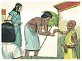 Book of Genesis Chapter 39-2 (Bible Illustrations by Sweet Media).jpg
