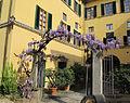 Borgo pinti 55, palazzina, giardino 02.JPG