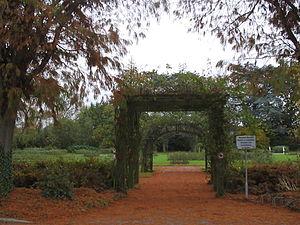 Boskoop - Rose Garden of Boskoop.