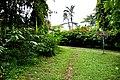 Botanic garden limbe1.jpg