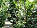 Botanischer Garten München-Nymphenburg - DSC07972.JPG