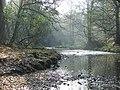 Bradshaw Brook - geograph.org.uk - 481597.jpg