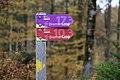 Bremer Loop im Bremgartenwald.jpg