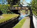 Bridge 118a Montgomery Canal - geograph.org.uk - 1587565.jpg