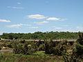 Bridge on the H12, slightly mangled.jpg