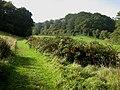 Bridleway approaching Elvastone Wood - geograph.org.uk - 1000063.jpg