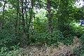 Bromborough Moat from Pool Lane 4.jpg