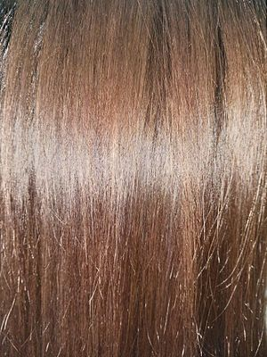 Brown hair - A close-up view of brown hair