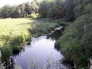 Dubysa ties Bubiais.Foto:Lazdynas at lt.wikipedia