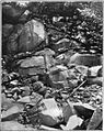 Bulletin 426 Plate XI A Wray Quarry.jpg