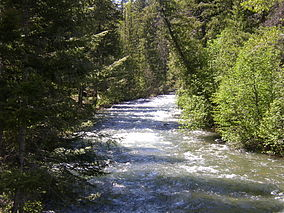 Wenatchee National Forest Wikipedia