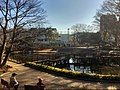 Bunko no mori park - Shinagawa - Feb 10 2020 various 16 14 53 966000.jpeg