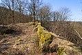 Burgruine-Hattstein-JR-E-3731-2020-04-02.jpg