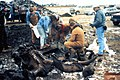Burning Tree Mastodon excavation (mid-December 1989), Burning Tree Golf Course, Heath, east-central Ohio.jpg