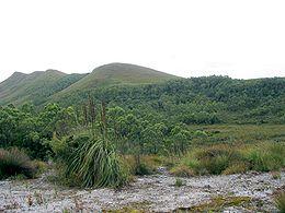 Tasmanien – Wikipedia