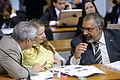 CDH - Comissão de Direitos Humanos e Legislação Participativa (15589302327).jpg
