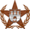 COTW Towns Copper Barnstar Hires.png