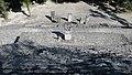 Calakmul-20.jpg