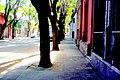 Calle Charrua - panoramio (1).jpg