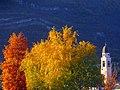 Calliano campanile autunno.jpg
