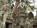Cambodia 08 - 095 - Ta Prohm (3228554916).jpg