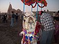 Camel at Dwaraka Beach.jpg