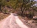 Camino Hacia Las Huertas - panoramio.jpg
