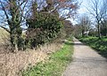 Canal side footpath - geograph.org.uk - 786610.jpg