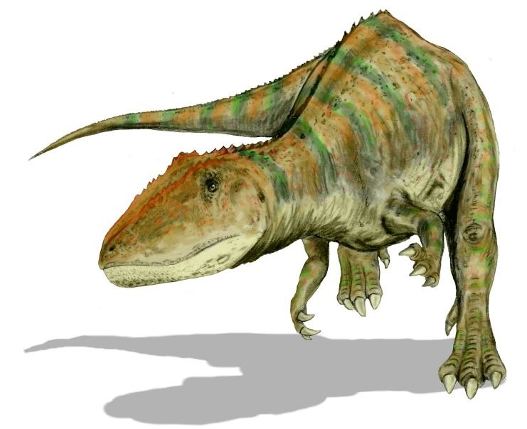 Carcharodontosaurus BW